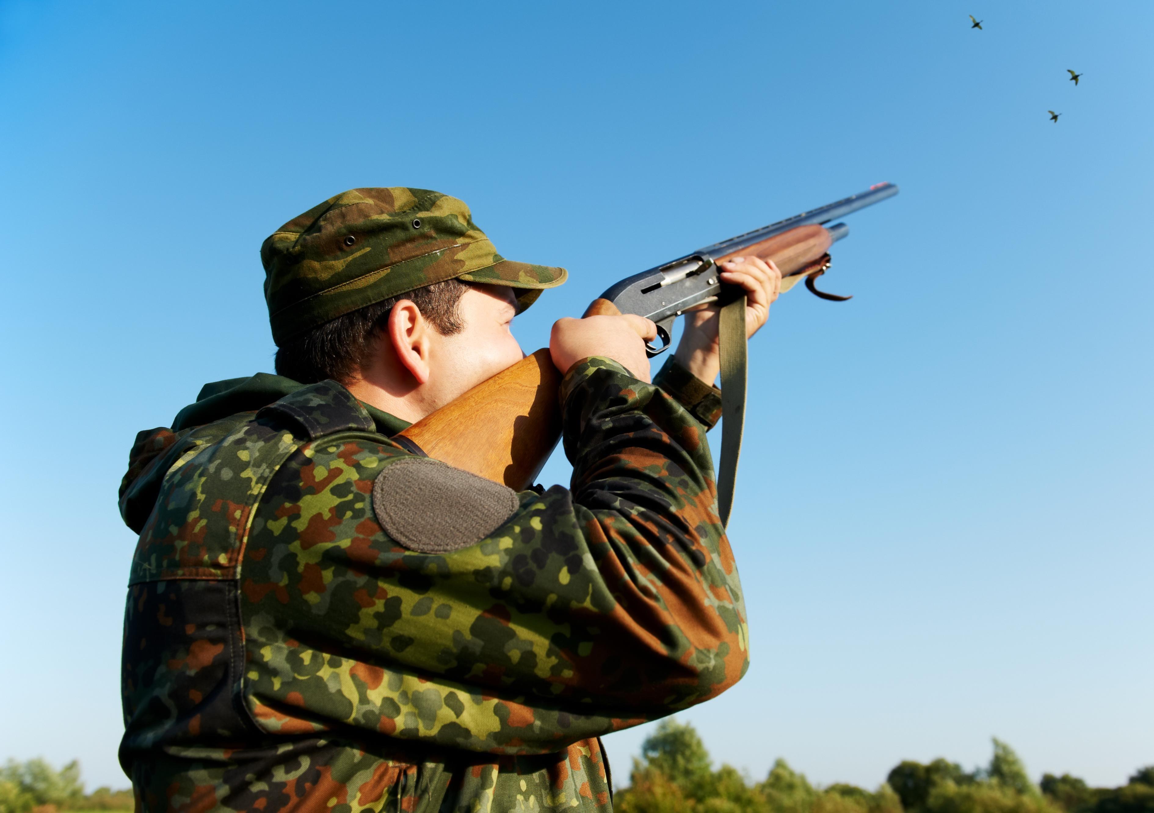 Jagdschrotpatronen